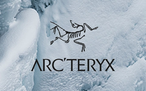 Lots of snow with Arc'teryx brand logo in the middle