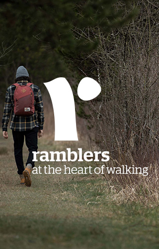 The Ramblers - person walking in Autumn forest